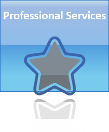 AccuZIP Professional Services Group